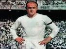 皇马百年最佳球员,金箭头迪斯蒂法诺!