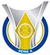 巴西甲级联赛