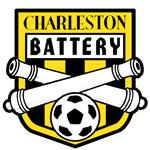 查尔斯顿电池